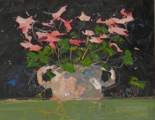 Cyclamen in flower pot 1