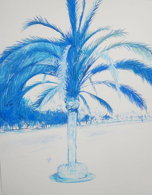 Palm I 1