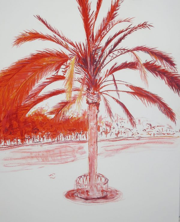 Palm II 1