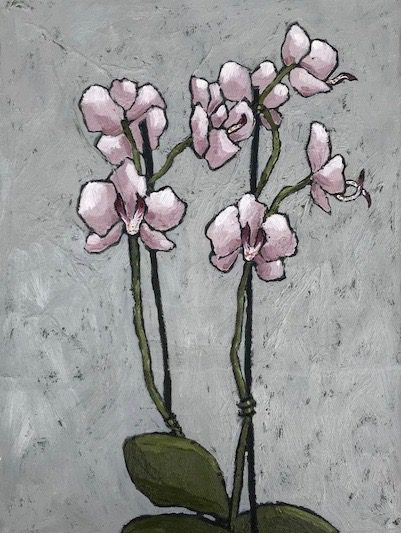 Pink Orchid 1