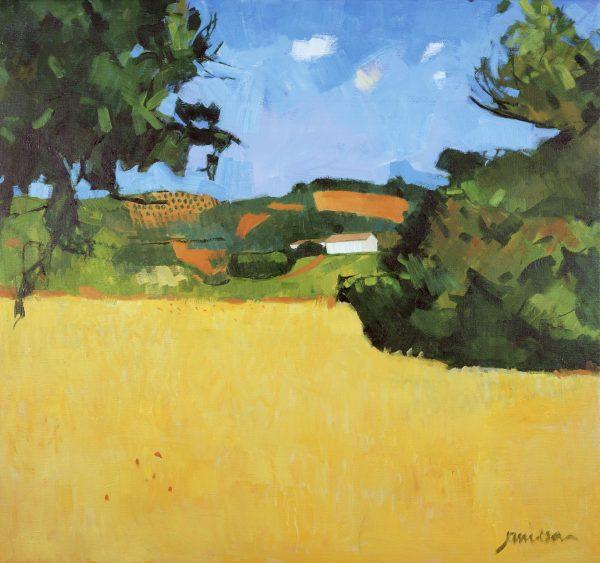 Yellow Field 1