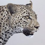 Painting Wildlife with Acrylics