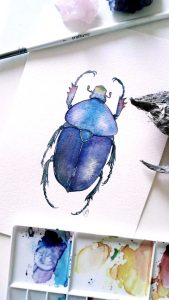 Children's Half Term Workshop - Painting Beetles & Bugs in Watercolour 3
