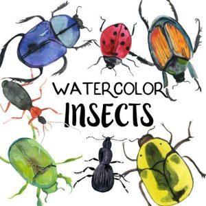 Children's Half Term Workshop - Painting Beetles & Bugs in Watercolour 1