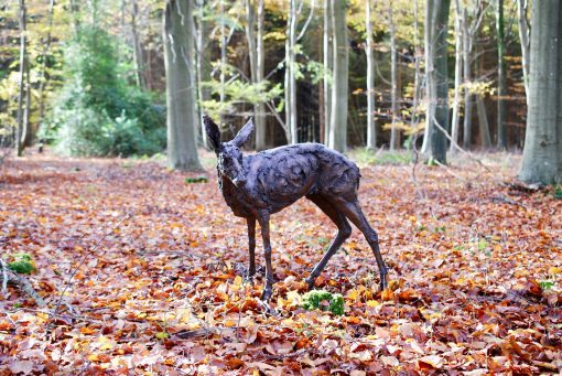 Holly Hickmore, Roe Deer Looking 1