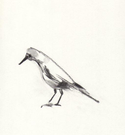 Lucie Geffre, Bird 1