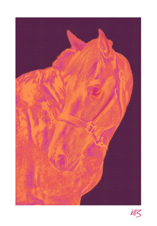 Kos Evans, Pop Horse II 1
