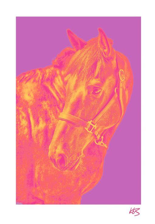 Kos Evans, Pop Horse III 1