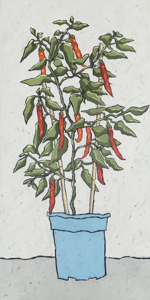 Jane Hooper, Chilli Plant 1