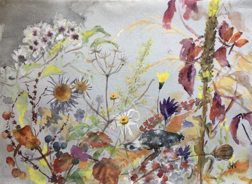 Jenny Hill-Norton, September, Noar Hill 1